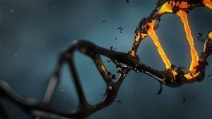【新知】Hydrodynamic Gene Delivery用靜脈注射就能把基因送入體細胞內!